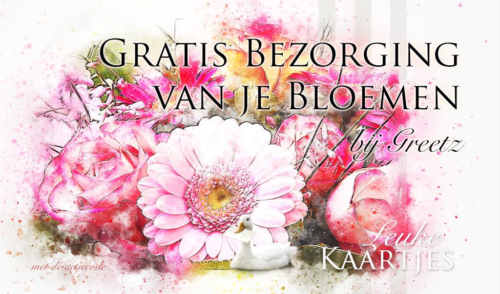 Gratis bezorging bloemen bij Greetz