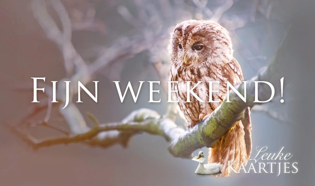 Fijn weekend!