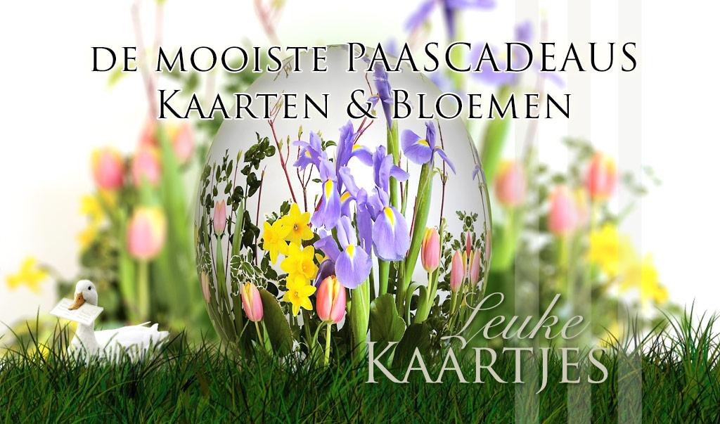 Pasen - Paascadeaus, Kaarten & Bloemen